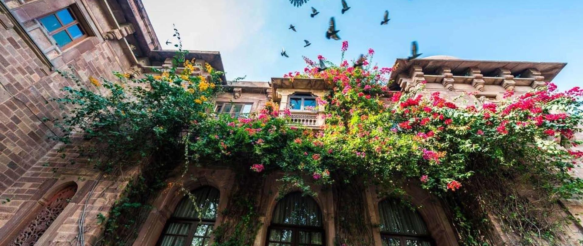 Take vows amidst royal splendor let hearts unite-Ranbanka Palace